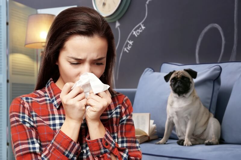 some dogs can cause allergy