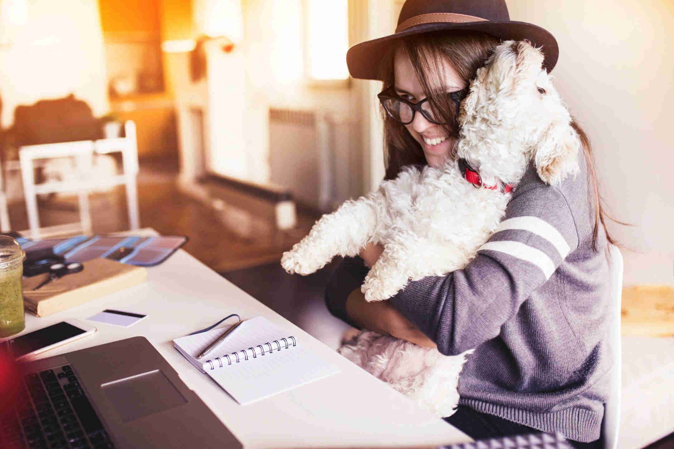 woman with a puppy before a computer
