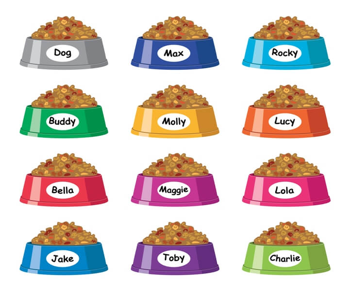dog bowls with names